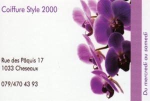 Coiffure Style 2000